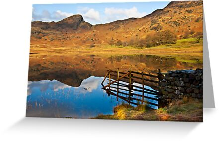 The Fence - Blea Tarn by Trevor Kersley