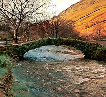 Packhorse Bridge - Wasdale Head by Trevor Kersley