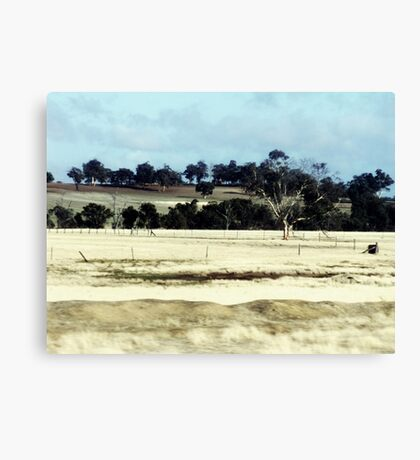 On the Brookton Highway Canvas Print