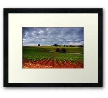 Fertile soils Framed Print