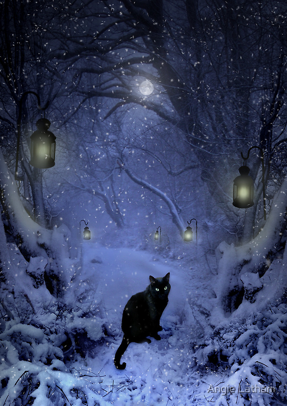 Frostar Midnight by Angie Latham