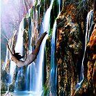 Leap Of Faith by AnimiDawn
