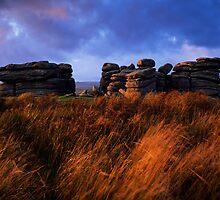 Combestone Tor - Dartmoor, Devon, England by Craig Joiner