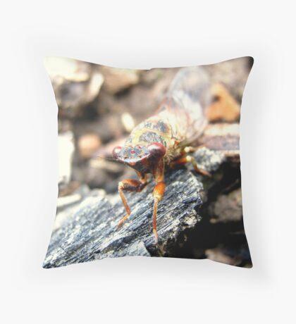 Little Strolling Cicada Throw Pillow