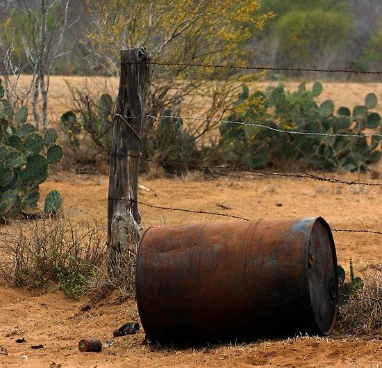 The Ranch - Near the Mexican Border, Texas by Debbie Pinard