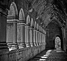 Quin Abbey B&W, County Clare, Ireland by upthebanner