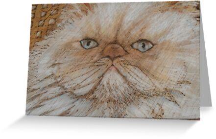 kitty kaboodle by lynnieB