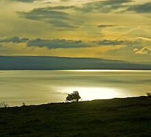 Morecambe Bay by Jamie  Green