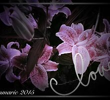 Stargazer Love... by linmarie
