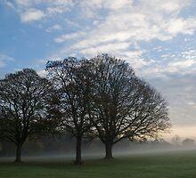 Misty November morning No3 by StephenRB