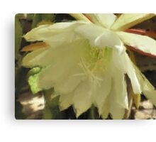 Pastel Flower -Close Up Canvas Print