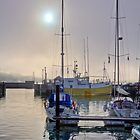 Harbour Mist by timmburgess
