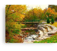Fall Wonders Canvas Print