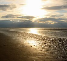 THE BEACH III by Debbie Ashe