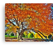 Still in colors Canvas Print