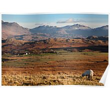 Esk Pike And Bowfell From Birker Moor Poster