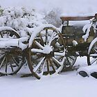 Wagon in Winter by John Butler