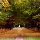 Autumn Burst by Greg Webb