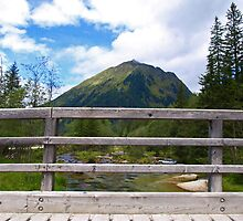 Beyond the Foot Bridge. by Lee d'Entremont