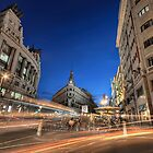 A Busy Corner II  by servalpe
