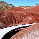 Painted Hills Boardwalk - John Day Fossil Beds National Monument, Grant County, OR by Rebel Kreklow