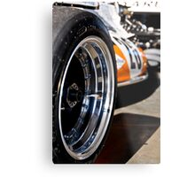 Depth of Field Metal Print