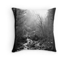 engelberg 2 Throw Pillow