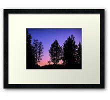 Sunset in forest Framed Print