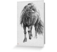 Black Horse sumi-e original watercolor painting Greeting Card