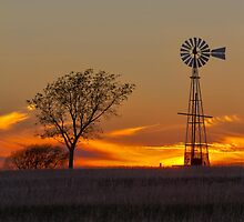 Texas Sunset (Vertical) by wa5rr