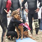 Surfdog Ricochet Loves Her Mommy and Her Mommy Loves Her by Karen Hight