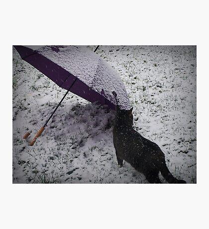 First Season Snow Photographic Print