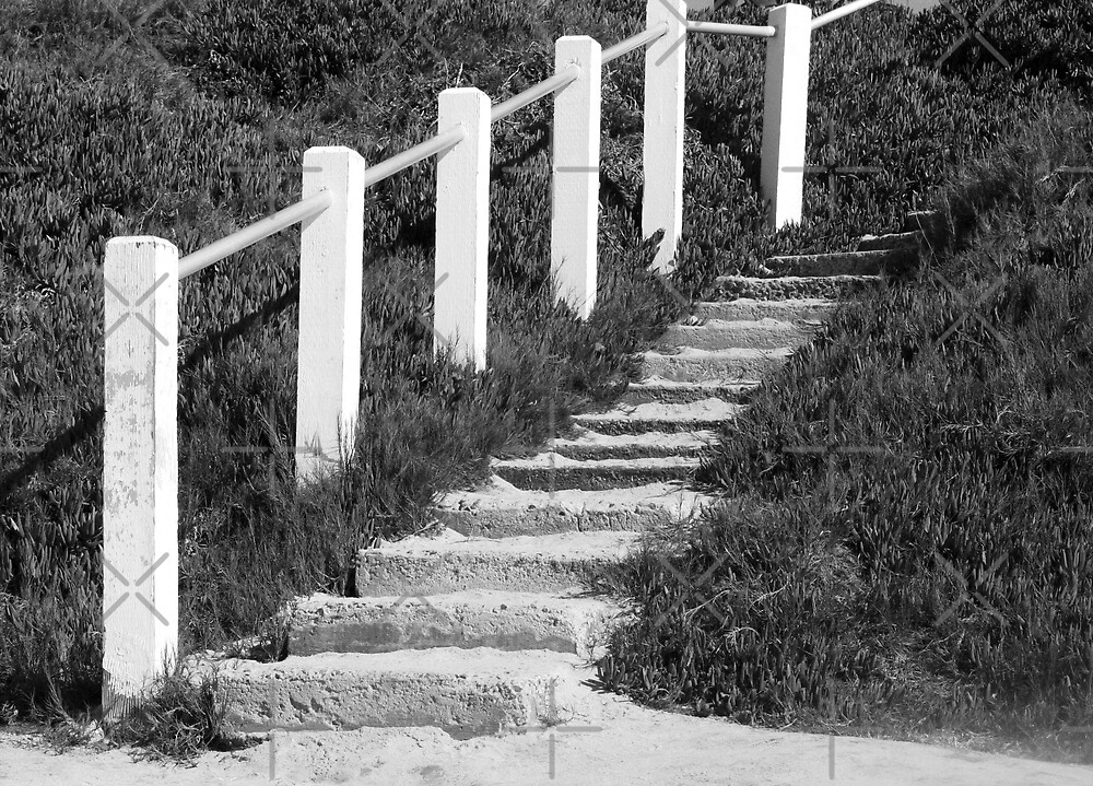 Sandy Steps... Going Up?? by Heather Friedman