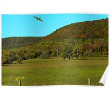 Cruz'en The Ozark Mountains Poster