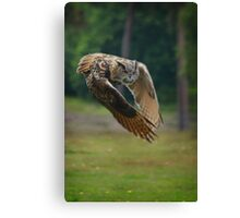 The beauty of owls Canvas Print