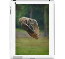 The beauty of owls iPad Case/Skin