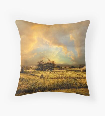 Valley Views Throw Pillow