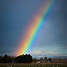 Rainbow with Scripture by Kathleen  Bowman
