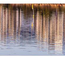 Kawana reflections by Robert Munden