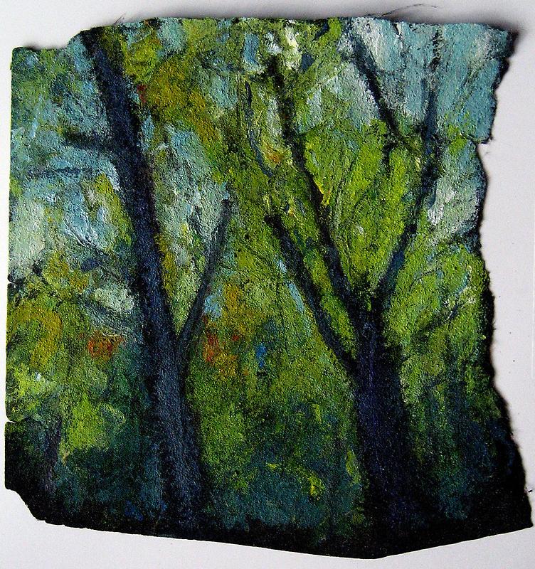 Rock Creek Trees by Marcie Wolf-Hubbard