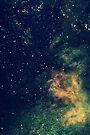 Dearest Constellation by Joshua Greiner