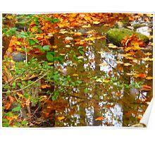 Maple Leaf Creek Poster