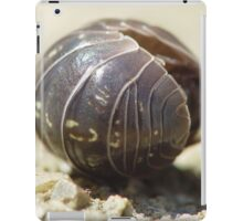 Funky Pill Bug iPad Case/Skin
