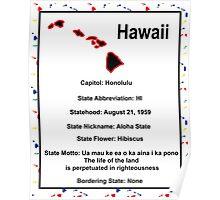 Hawaii Information Educational Poster