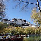 Potala Palace by Susan Moss