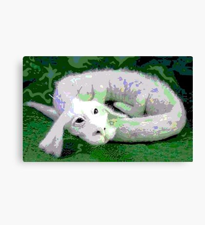 Falcor Resting from Flight Canvas Print