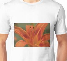 Orange Daylilly, As Is Unisex T-Shirt