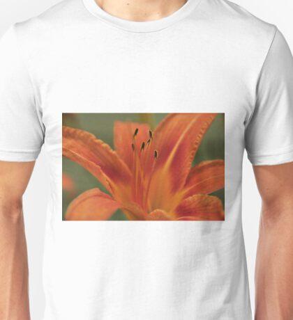 Orange Daylilly, As Is Unisex T-Shirt