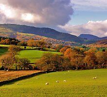 Above Dolgellau North Wales by angel1978
