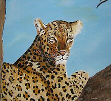 Leopard resting by Cathacat